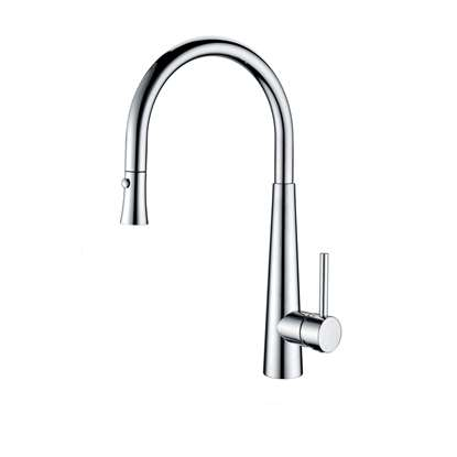 Picture of Clearwater: Porrima Pull Out Chrome Tap